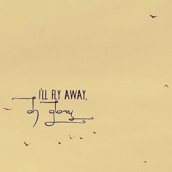 Wall Art - Photograph - I'll Fly Away, Oh Glory, I'll Fly by Traci Beeson