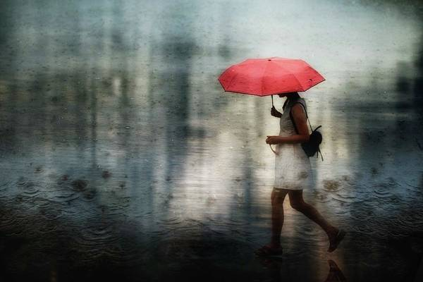 Rainy Photograph - I'll Never Get Through This Alone... by Charlaine Gerber