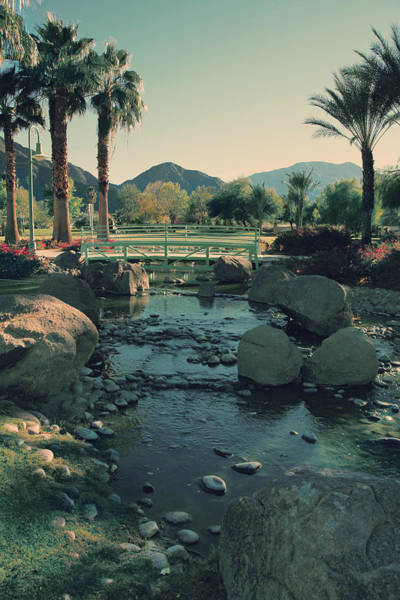 La Quinta Wall Art - Photograph - I'll Never Say Goodbye by Laurie Search