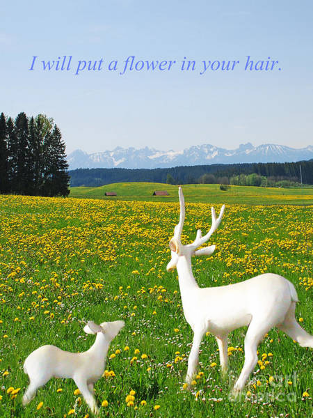 I'll Put A Flower Art Print