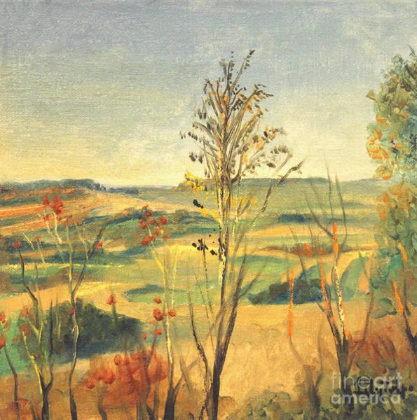 Illinois Country Art Print