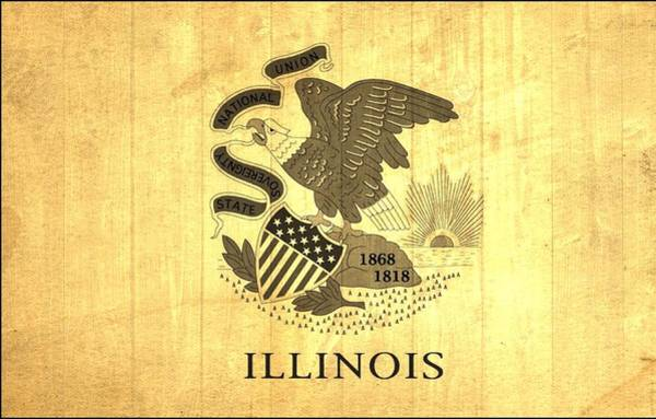 Chicago Bulls Photograph - Illinois State Flag Barn Wall by Dan Sproul