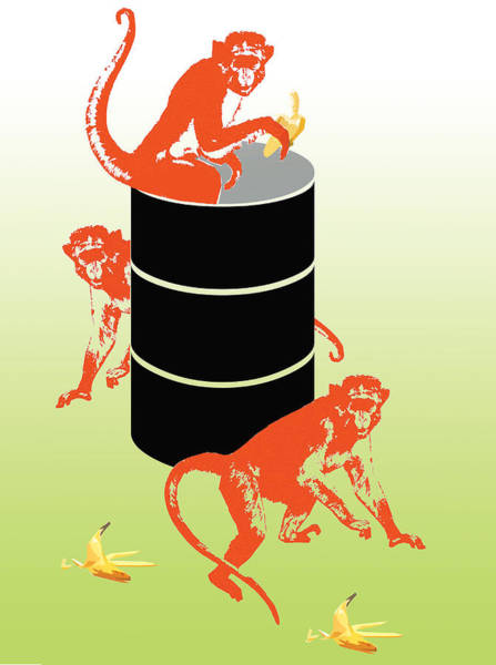Peel Photograph - Illustration Barrel Of Monkeys by Chicago Tribune