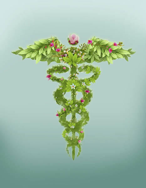 Wall Art - Photograph - Illustration Of Caduceus Symbol by Fanatic Studio / Science Photo Library
