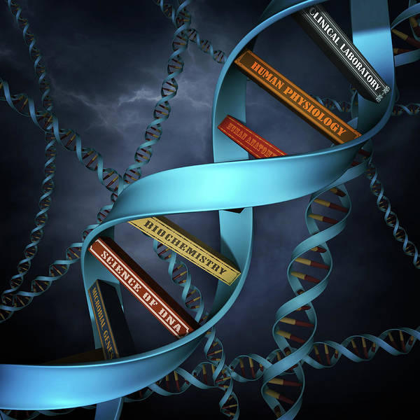 Options Wall Art - Photograph - Illustration Of Dna Replica With Books by Fanatic Studio / Science Photo Library