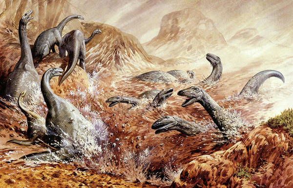 Wall Art - Photograph - Illustration Of Plateosaurus by Deagostini/uig/science Photo Library