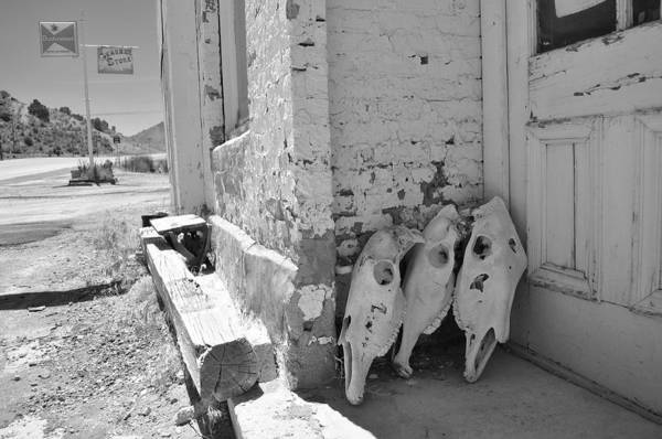 Wall Art - Photograph - I'm An Old Cowhand by Everett Bowers