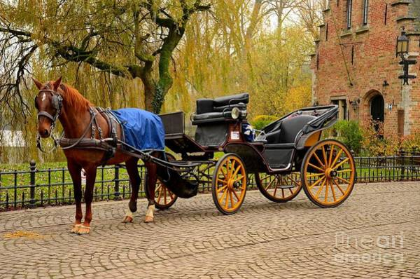 Photograph - Immaculate Horse And Carriage Bruges Belgium by Imran Ahmed
