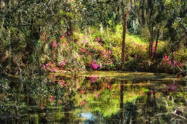 Photograph - Impressionism North Carolina by Beth Akerman