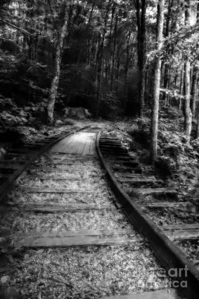 Photograph - Impressionist Tracks by Doc Braham