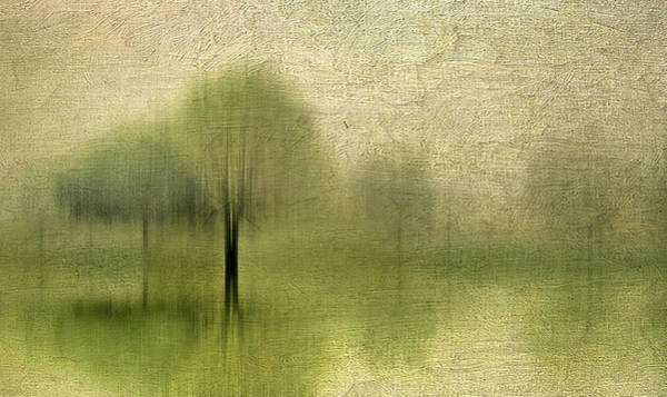 Photograph - Impressions Of Spring by Jessica Jenney