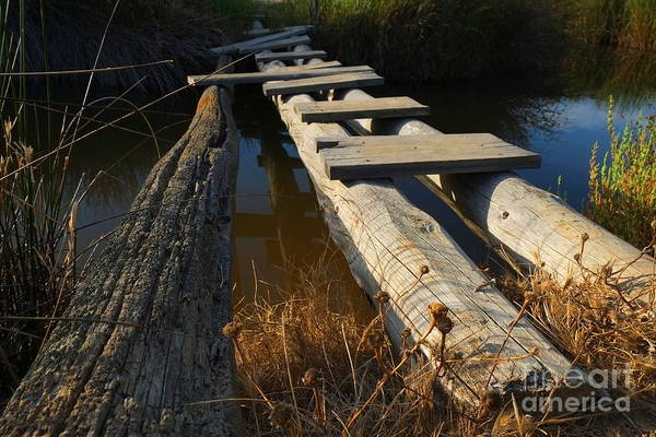 Improvised Wooden Bridge Art Print