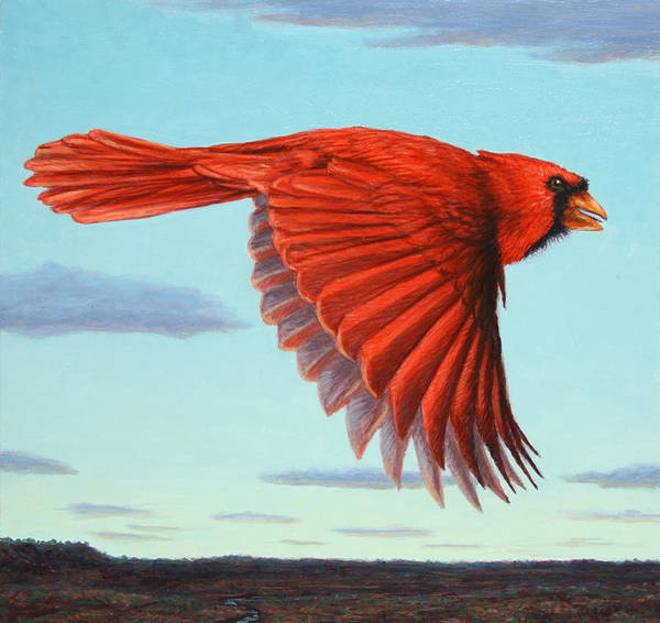 Wall Art - Painting - In Flight by James W Johnson