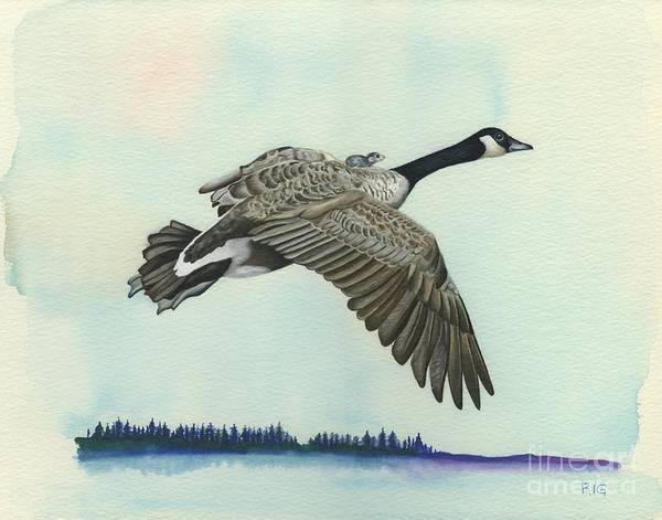 Drawing - In Flight by Rosellen Westerhoff