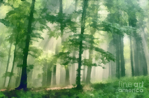 In Forest Art Print by Odon Czintos