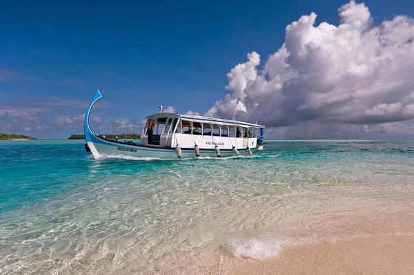 Photograph - In Harmony With Nature. Maldives by Jenny Rainbow