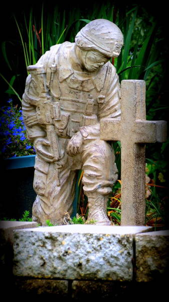 Photograph - In Honor Of The Wounded Warrior by Kay Novy