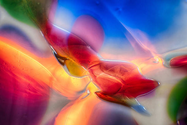 Photograph - In Loving Color by Omaste Witkowski
