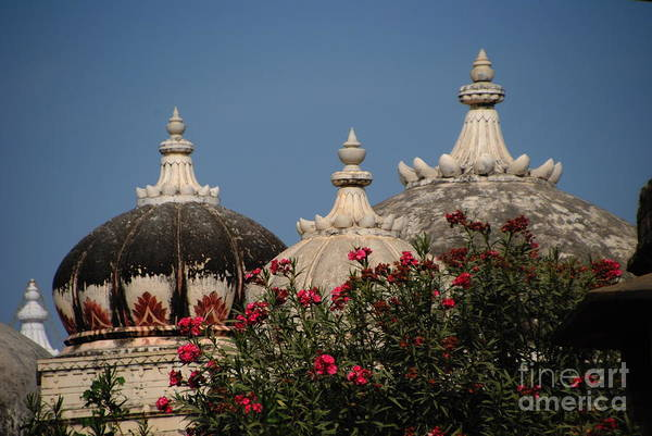 Indian Burial Ground Photograph - Udaipur Cenotaphs by Jacqueline M Lewis