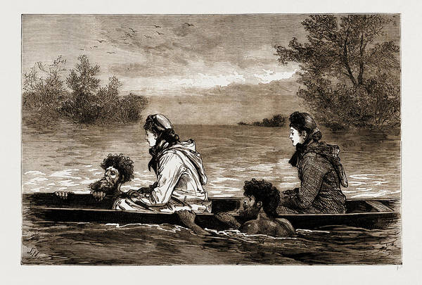 New South Wales Drawing - In Mid-stream, New South Wales, Australia by Litz Collection