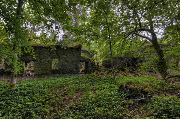 Photograph - In Ruins I by Matt Swinden