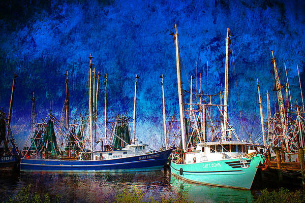 Photograph - In Safe Harbor by Barry Jones
