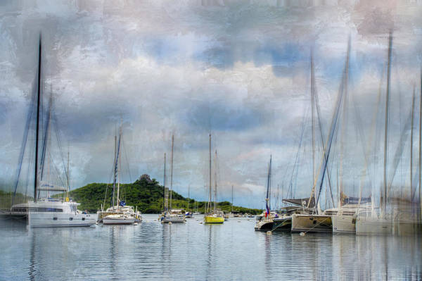 Wall Art - Photograph - In The Bay by Kathy Jennings