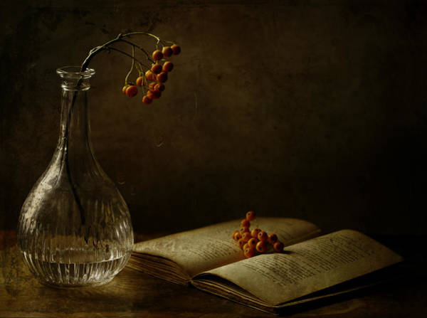 Vases Photograph - In The Dark Of My Days by Delphine Devos