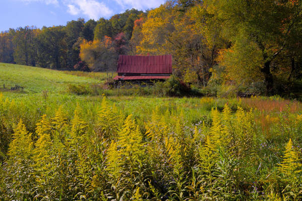 Chilhowee Photograph - In The Heart Of Autumn by Debra and Dave Vanderlaan