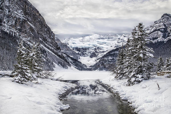 Lake Louise Wall Art - Photograph - In The Heart Of The Winter by Evelina Kremsdorf
