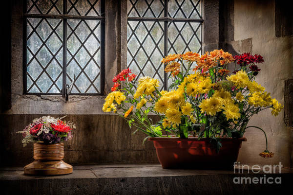 Holy Trinity Photograph - In The Light by Adrian Evans