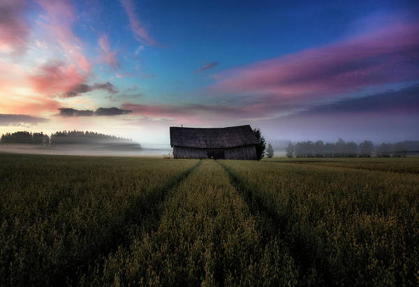 Old Barns Wall Art - Photograph - In The Middle Of The Day. by Mika Suutari