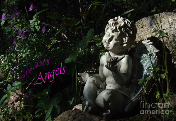 Photograph - in the midst of Angels by Marianne NANA Betts