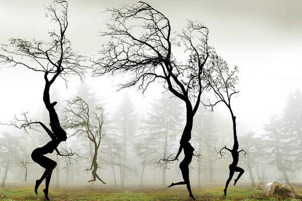 Pagan Wall Art - Digital Art - In The Mist by Igor Zenin