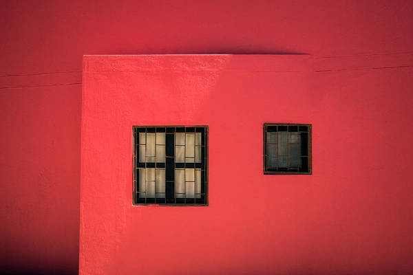 Wall Art - Photograph - In The Pink by Linda Wride