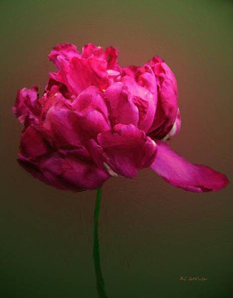 Painting - In The Pink by RC DeWinter