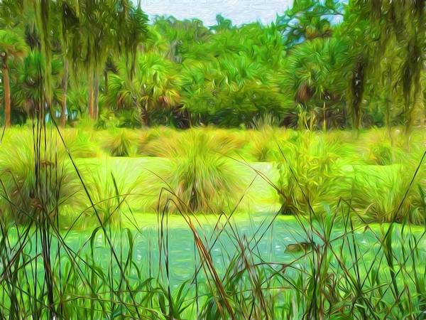 Photograph - In The Swamp by Alice Gipson