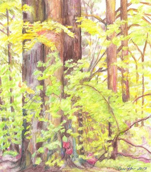Utilitarian Painting - In The Woods - Study by Cris Johnson