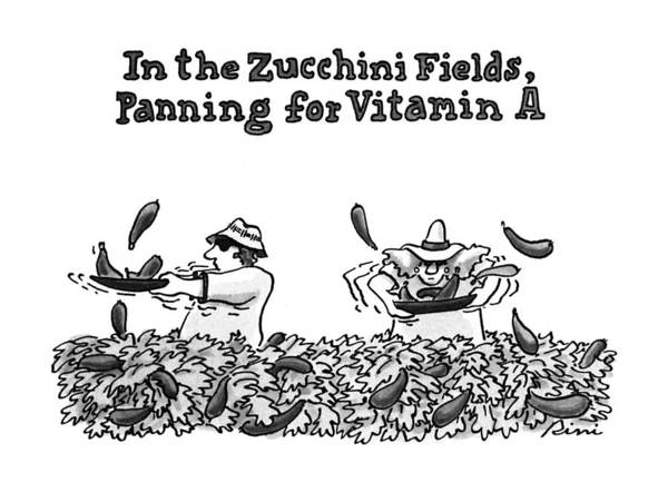 Rural Drawing - In The Zucchini Fields by J.P. Rini