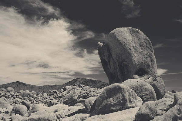 Joshua Tree National Park Wall Art - Photograph - In This Strange Land by Laurie Search
