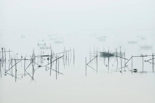 Marshes Photograph - Inba by Kouji Tomihisa