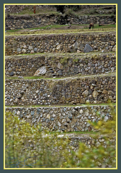 Photograph - Inca Engineering by S Paul Sahm