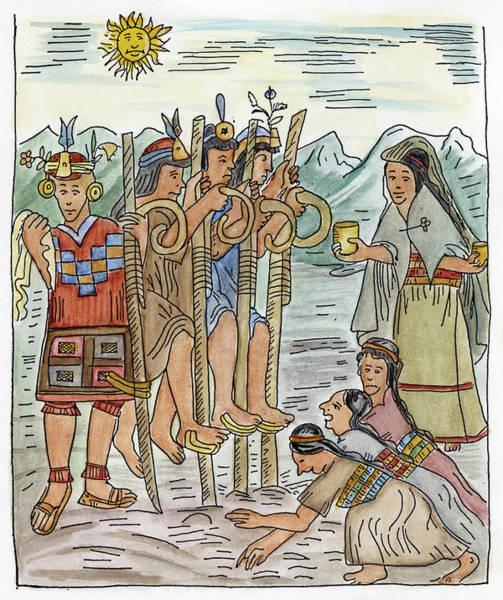 Indian Corn Drawing - Inca Farmers by Granger