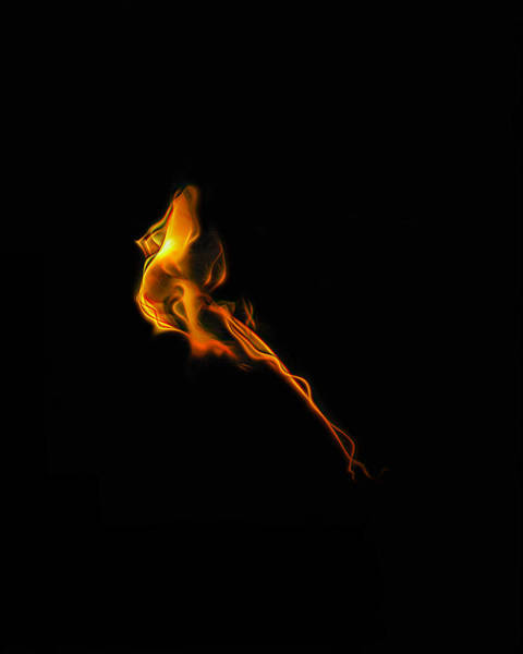 Photograph - Incenerate by Wes Jimerson