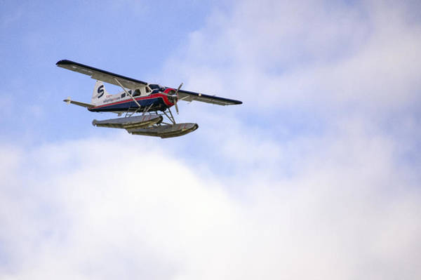 Photograph - Incoming Seaplane by Ross G Strachan