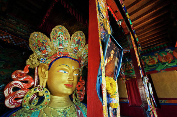 Dalai Lama Wall Art - Photograph - India, Ladakh, Thiksey, Picture by Anthony Asael