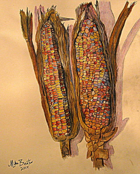 Indian Corn Drawing - Indian Corn by Mike Benton