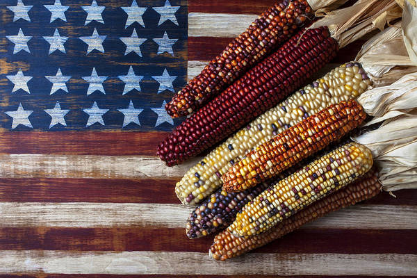 Gay Flag Photograph - Indian Corn On American Flag by Garry Gay