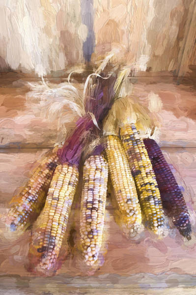 Wall Art - Photograph - Indian Corn Painterly Effect by Carol Leigh