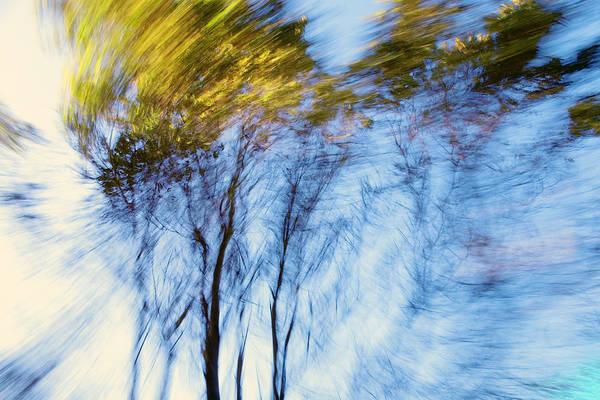 Furon Photograph - Autumn Wind by Daniel Furon